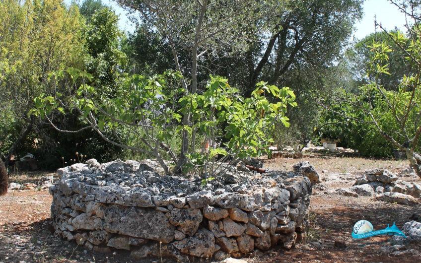 Lamie in pietra e terreno in Valle d'Itria
